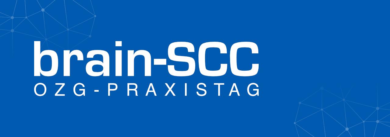 OZG-Praxistag ©brain-SCC GmbH